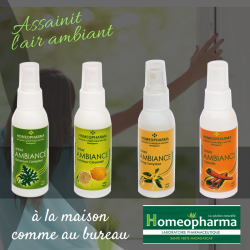 MAGIC SPRAY D'AMBIANCE MENTHE - SARO 60 ML {attributes}