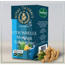 SI-3 CITRONNELLE-GINGEMBRE Bte / 20 infusettes {attributes}